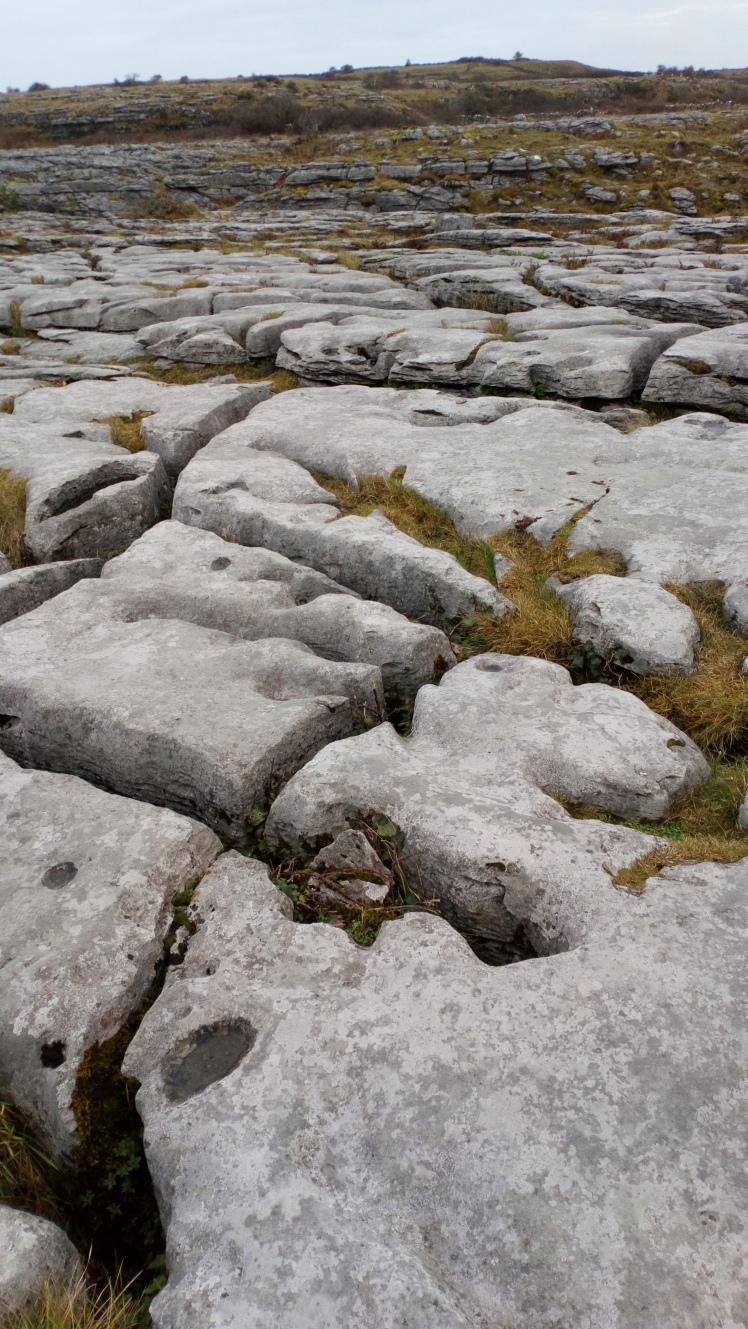 The Burren in Co. ClareDSC_5188